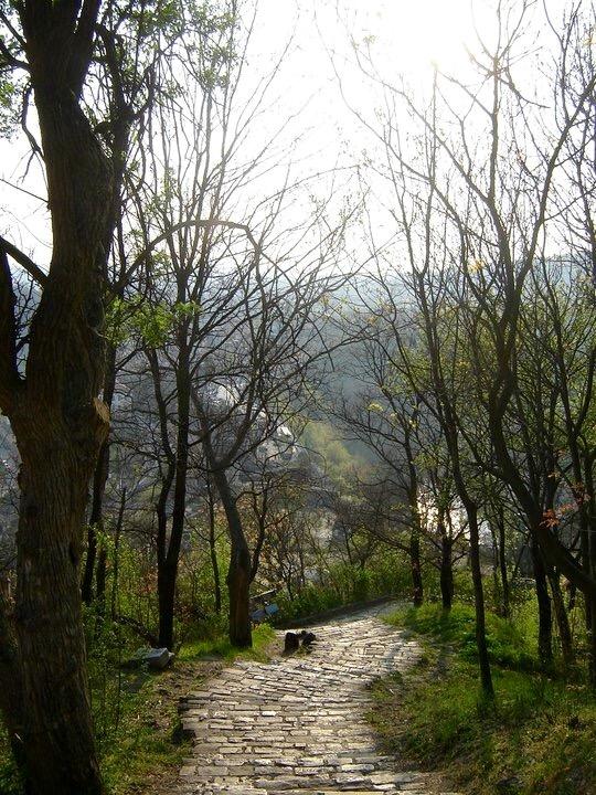 Ovidiu Muresanu Veliko Tarnovo