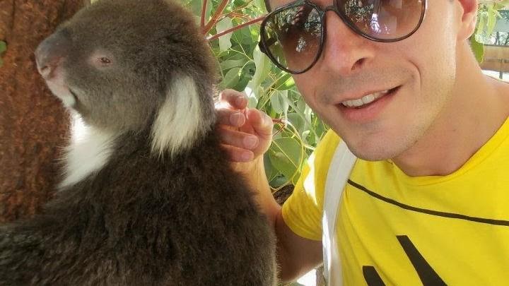 Wildlife Australia (despre canguri, koala si o echidna)