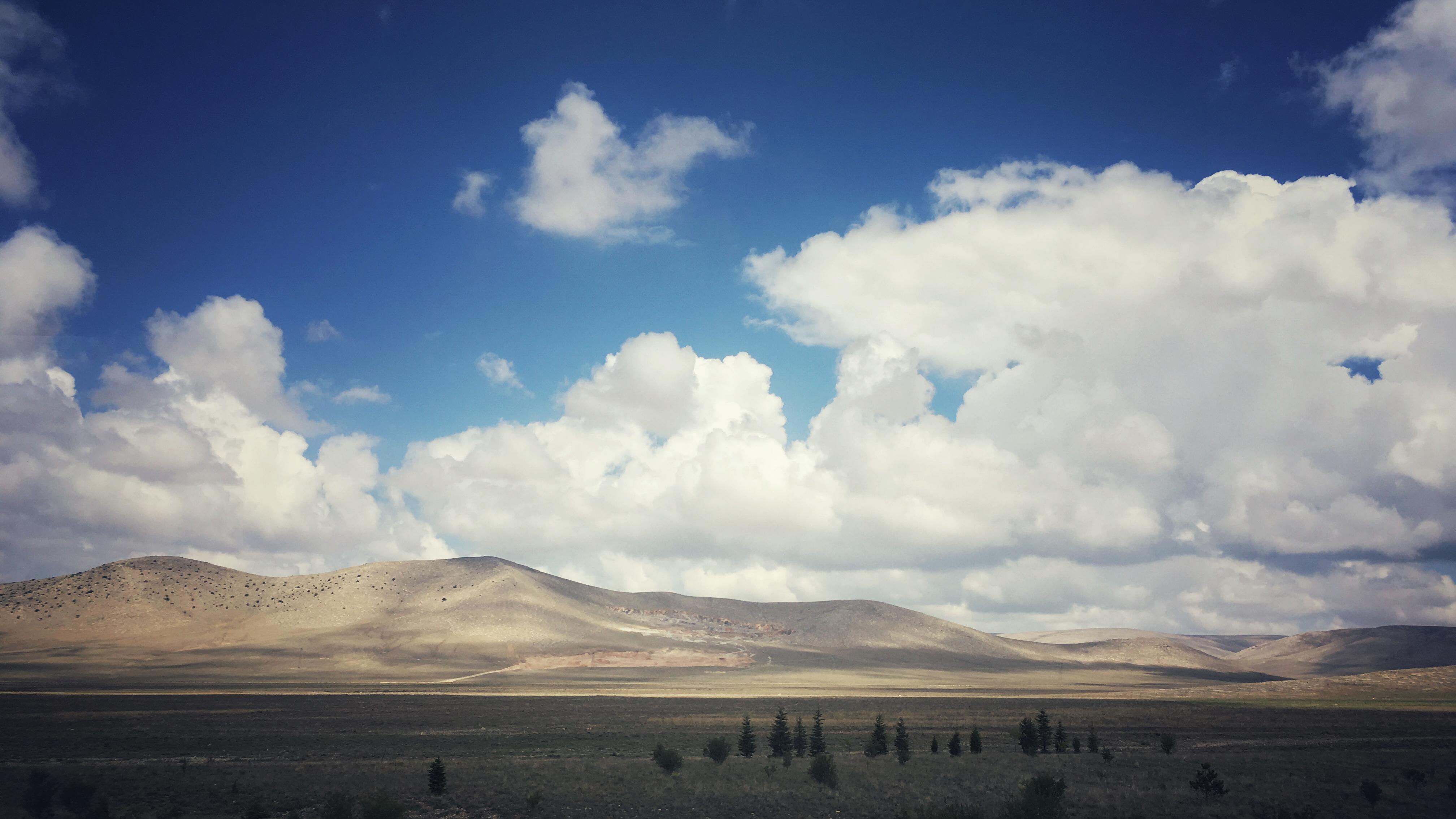 Ovidiu Muresanu Silk Road