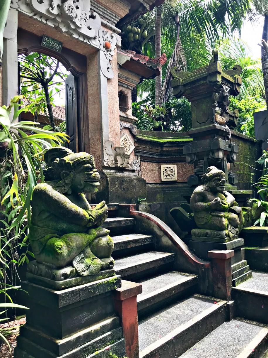 Ovidiu Muresanu Bali 2