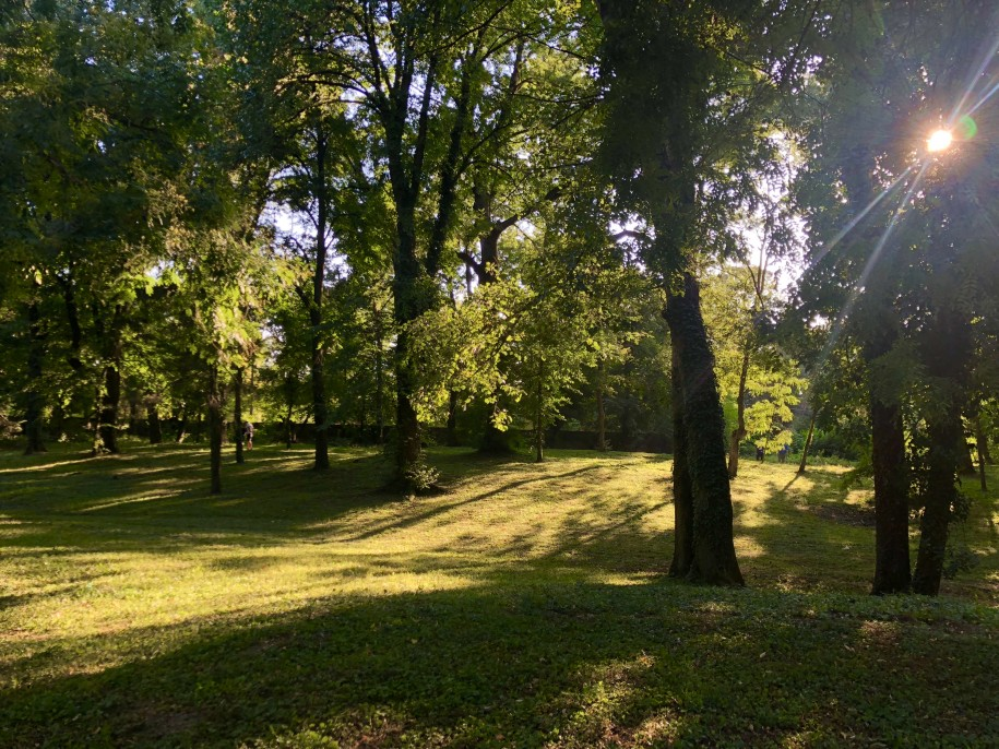 Ovidiu Muresanu Summer Well