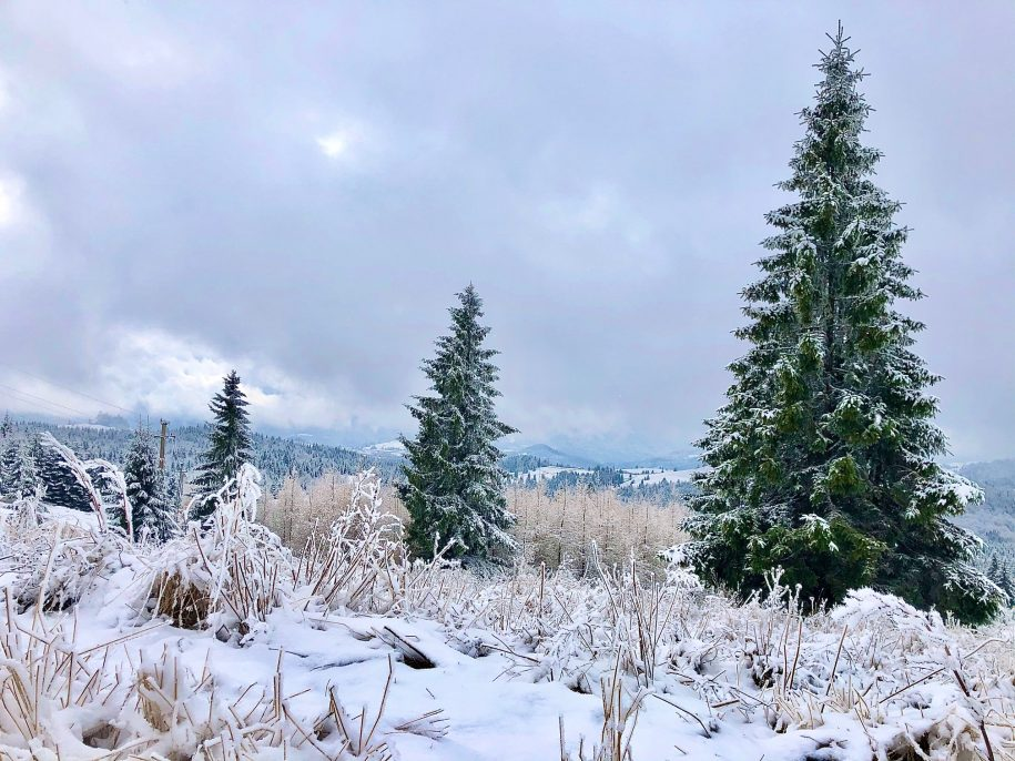 Ovidiu Muresanu Winter 7