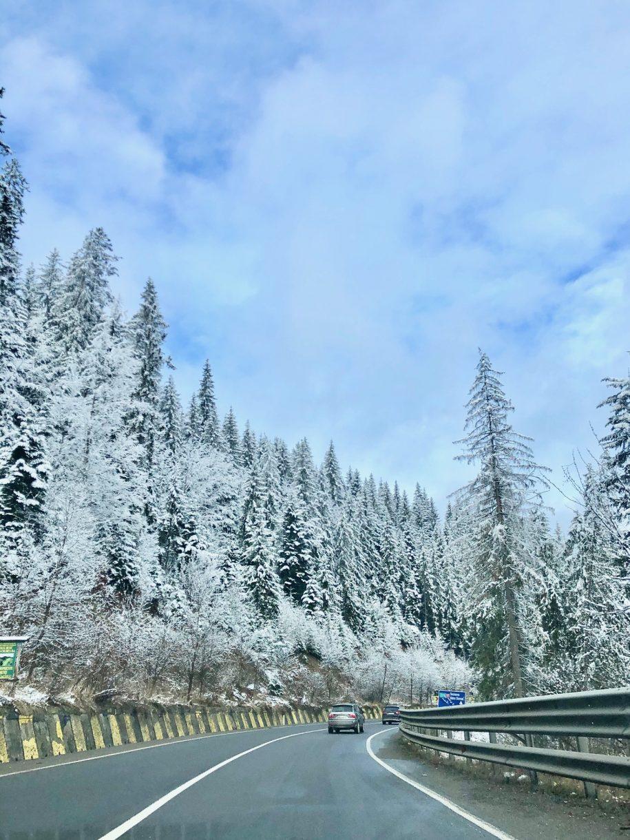 Ovidiu Muresanu Winter 8
